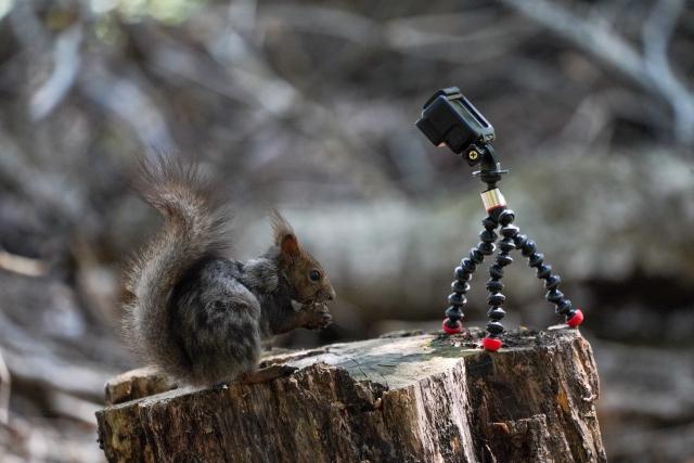 Goproを使いこなして動画撮影を趣味にしよう